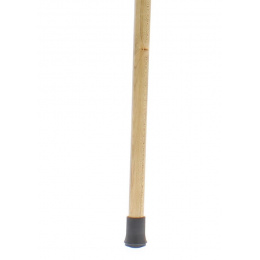 Dr. House's cane